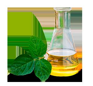 ¿Qué son los biocombustibles?